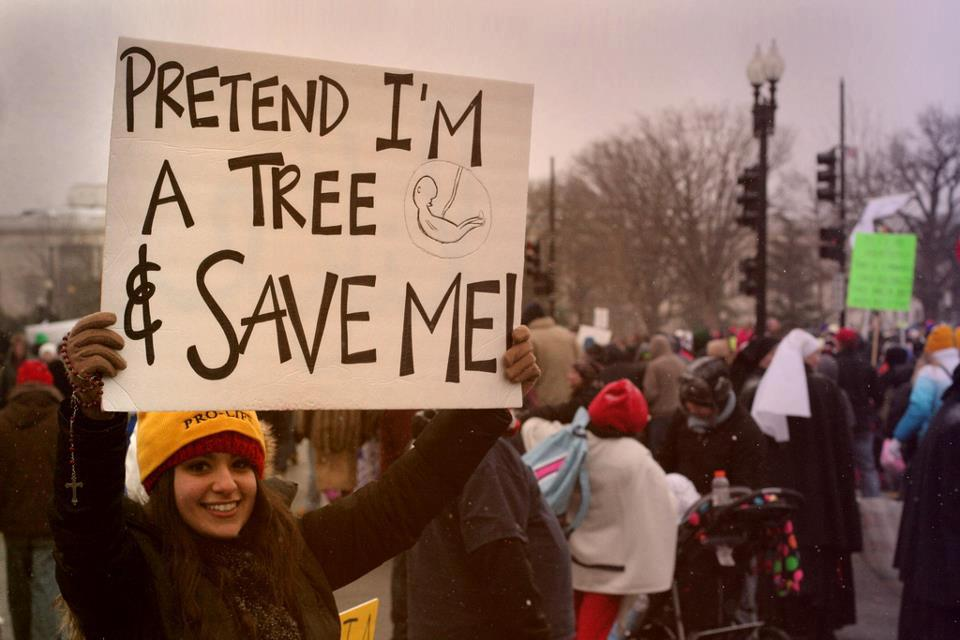Pretend I'm a Tree