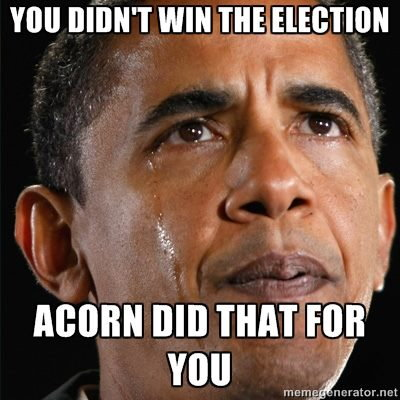ACORN Did That For You