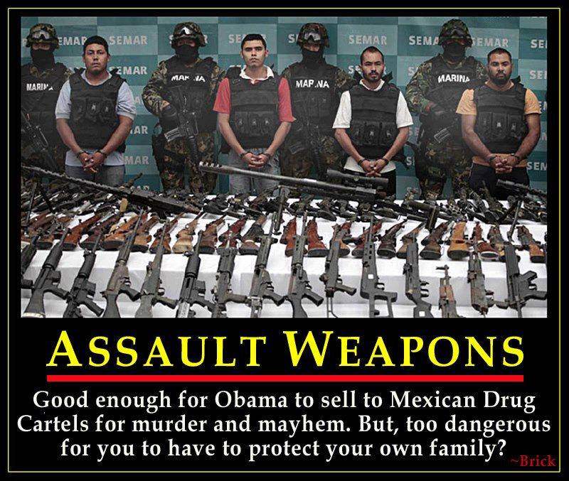 Assault-Weapons.png