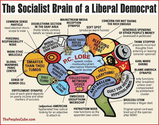 Brain of a Liberal