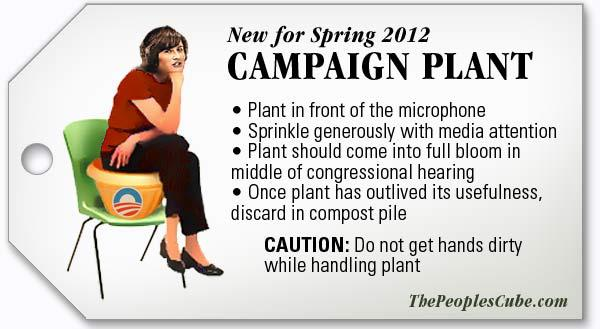 Campaign-Plant.jpg